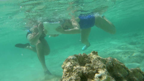 Tourists diving to take photo of coral reef Footage