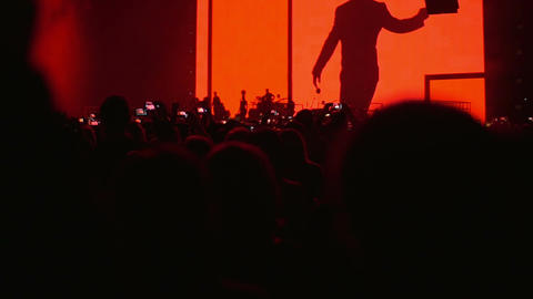Crowd having fun on the concert Footage