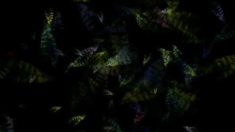 micro bio background,transparent... Stock Video Footage