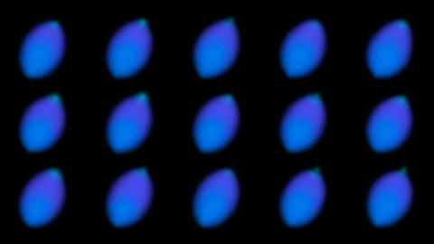 blue dot light background Animation