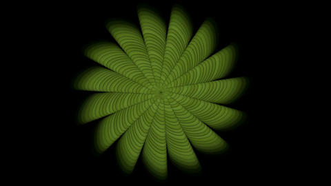 green swirl floral pattern,seamless... Stock Video Footage
