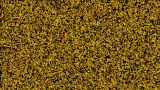 Golden Static And Electronic Noise.magma,particle,Pollen,Patterns,powder,Design,pattern,symbol,dream stock footage
