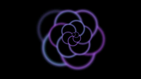animation of purple flower pattern in black... Stock Video Footage