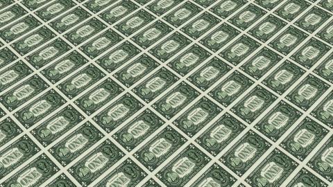 back of 1 dollar bills Animation