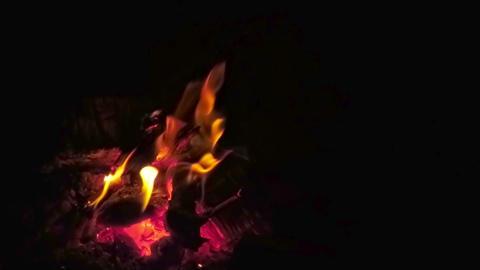 Bonfire at Night Footage