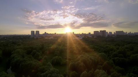 Park Sunset stock footage