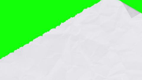Tearing white paper revealing a green screen - diagonal version CG動画素材