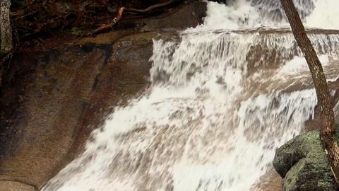 Cold Mountain Stream 11 ビデオ