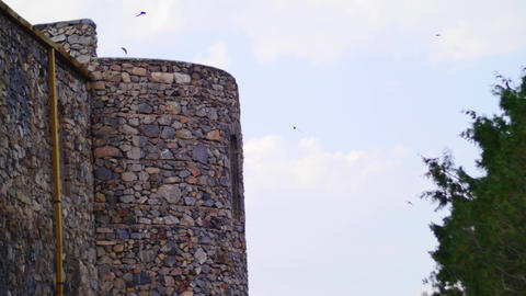 Birds Flying Around An Old Monastry Building stock footage