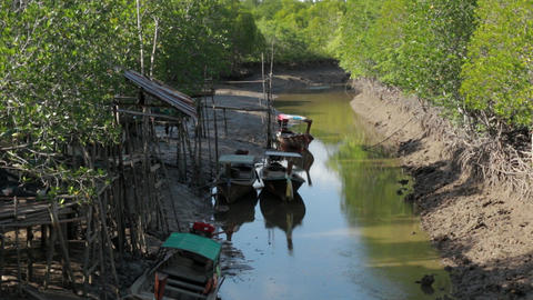 Mangrove river with boats floating and muddy banks Live Action