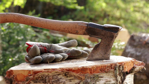 Axe hit on wood chopping block Live Action