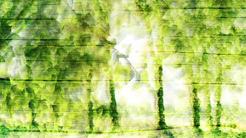 Green forest background Animation