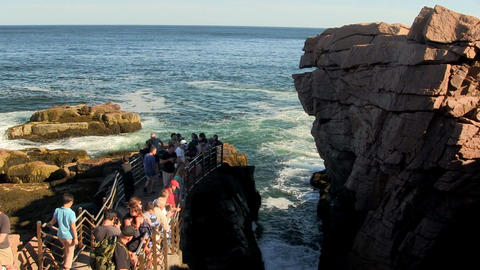 Tourists viewing Thunder Hole in Acadia Footage