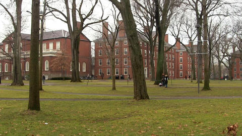 Harvard Yard Footage