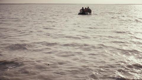 223. Wild Field On The Island In The Black Sea