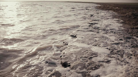223. Wild Field On The Island In The Black Sea 1