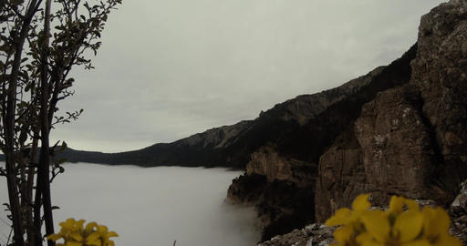 fog as the sea washes over rocks and cliffs, overcast sky and yellow flowers Footage