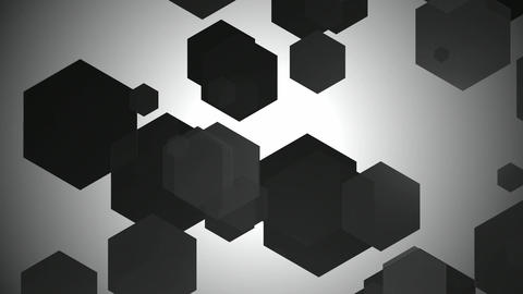 black white hexagon Animation