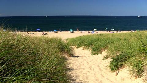 Beach path Footage
