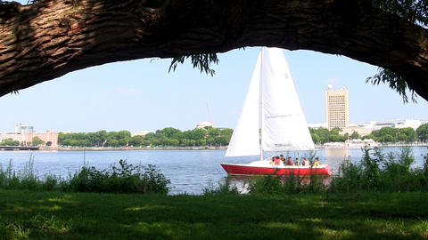 A Sailboat Travels Right To Left On Charles River In Boston Near Shore Under Arc stock footage