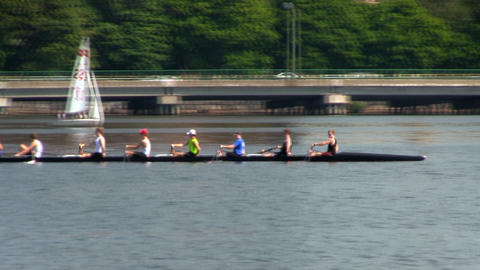 College crew team practices on Charles river in Boston on summer day with Cambri Footage