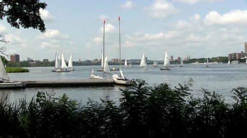Time-lapse of sailboats tacking on Charles river in Boston on summer day Footage