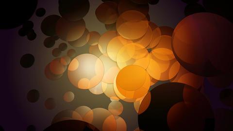 orange rounded motion Animation