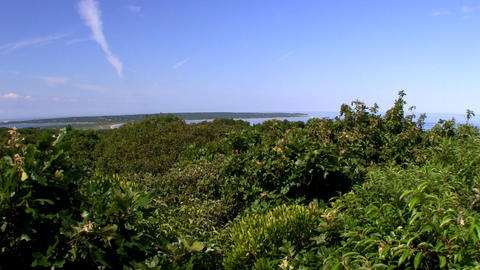 Top of prospect hill, part of Menemsha Hills Reservation on Martha's Vineyard Is Live Action