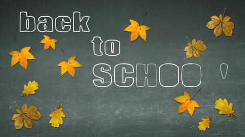 Back to school on a chalkboard with autumn leaves Footage