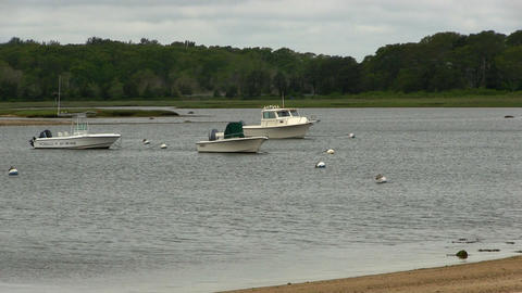 Moored boats cloudy day Cape Cod Footage