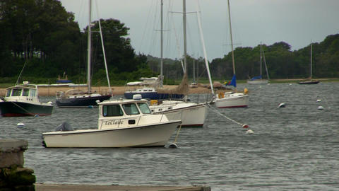 Boats facing upwind in Cape Cod cove Footage