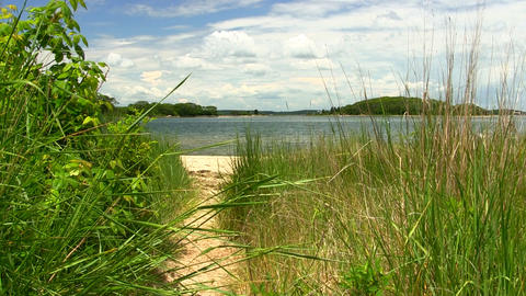 Private Path To Beach Cape Cod stock footage