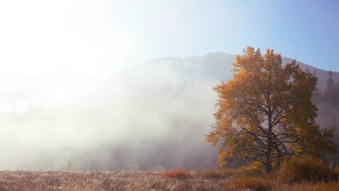 Autumn Morning Mist in the Mountains Footage