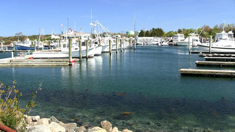 Boats slips docks marina Cape Cod Footage