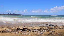 Pan of Molokai Beach in Hawaii Footage
