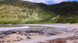 Molokai beach cover in Hawaii Footage