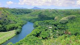 Wailua River In Kauai Hawaii stock footage