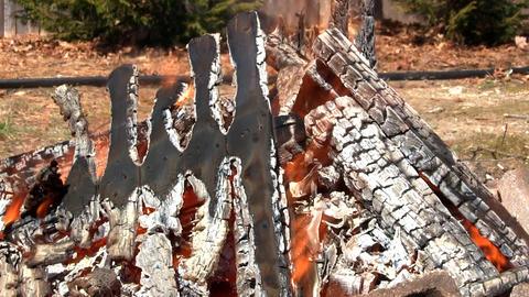 Blazing campfire Footage