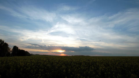 Landscape Stock Video Footage