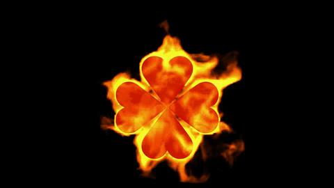 burning four hearts shaped quadrifoglio... Stock Video Footage