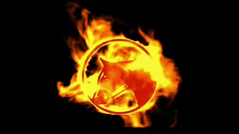 fire horse symbol Stock Video Footage