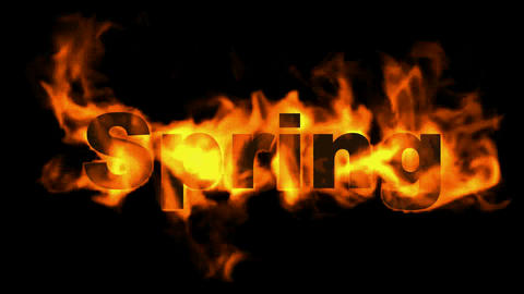 fire spring word Stock Video Footage