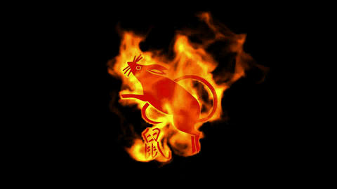 chinese zodiac of fire rat and handwriting chinese... Stock Video Footage