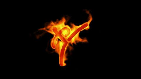 burning fire taekwondo athlete symbol Stock Video Footage