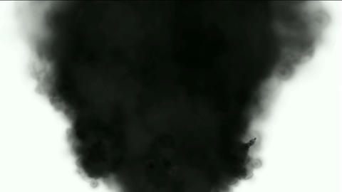 Black smoke in white background,seamless... Stock Video Footage