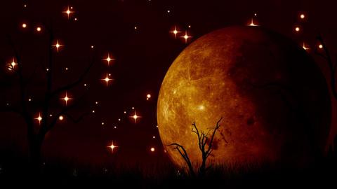Dark Moon stock footage