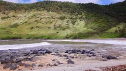 Pan of beach cove in Molokai Footage