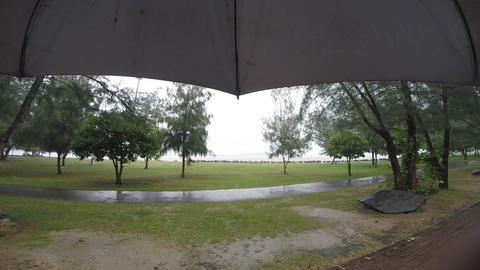HD Footage Of Raining With Umbrella stock footage