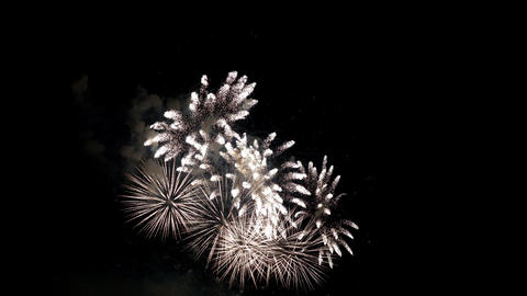 Firework Pyrotechnic Show