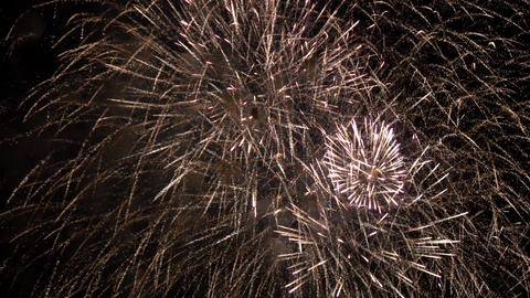 Firework Pyrotechnic Show 0